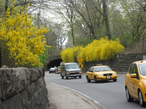 86th st. transverse Central Park
